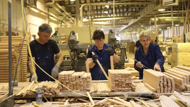 Proizvodnja namještaja od bukovog i hrastovog drveta